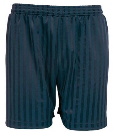 Navy Blue Primary School Shadow Stripe PE Shorts